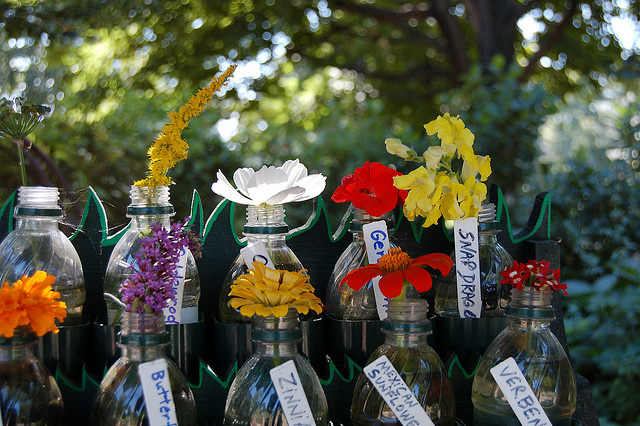 Flores en botellas